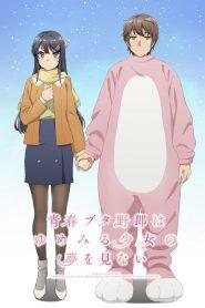 Seishun Buta Yarou Wa Bunny Girl Senpai No Yume Wo Minai